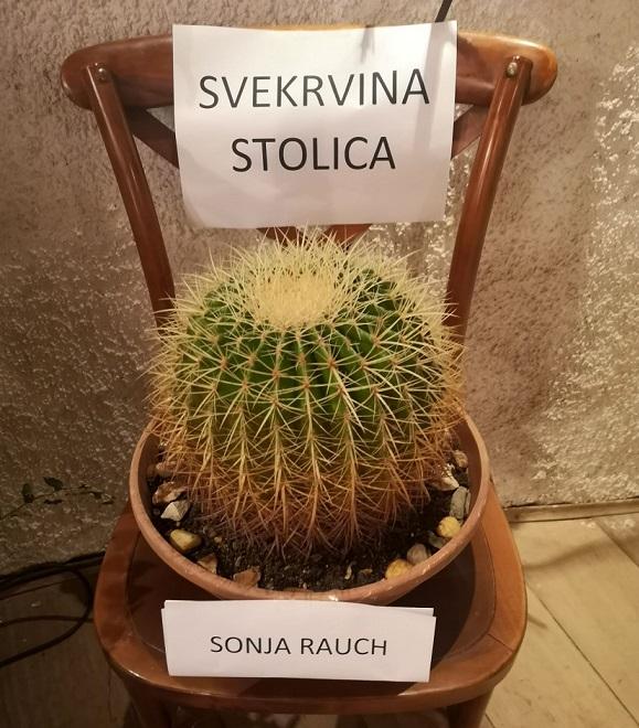 Izložba kaktusa u Žminju